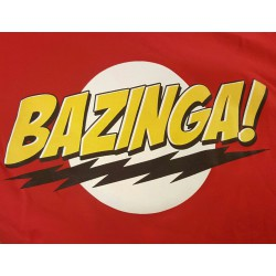 "The Big Bang Theory ""Bazinga"""