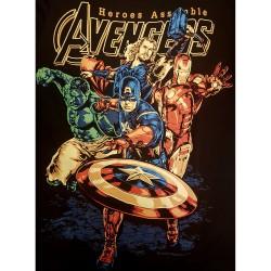 """Avengers """"Heroes Assamble""""..."""