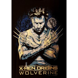 "X-men Origins ""Wolverine"""
