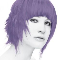 Stargazer purple hårtoning