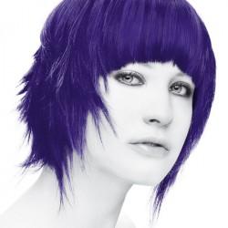 Stargazer Violet hårtoning