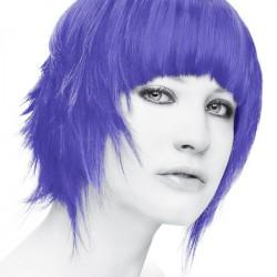 Stargazer Soft Violet...