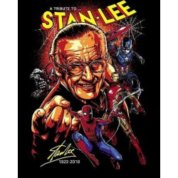 A Tribute to Stan Lee T-shirt